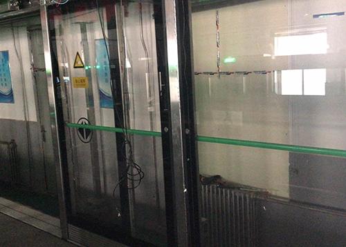 重庆四号线屏蔽门玻璃